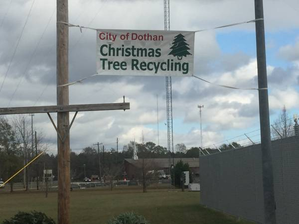 city of dothan christmas tree recycling. Black Bedroom Furniture Sets. Home Design Ideas