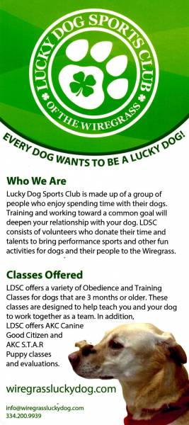 Lucky Dog Sports Club - Dog Training Classes