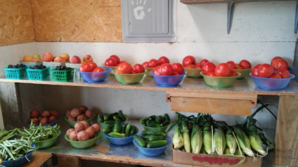 Watermelon's , Sweet Corn , Slocomb Tomatoes, Green Boiled Peanut's