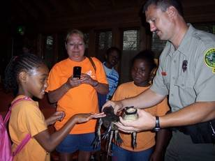 Learn all About Alligators at Landmark Park's Animal Adventures
