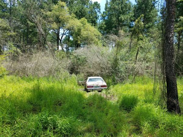 12:27 PM.... Vehicle in the Woods on Hwy 109 in Southern Junction