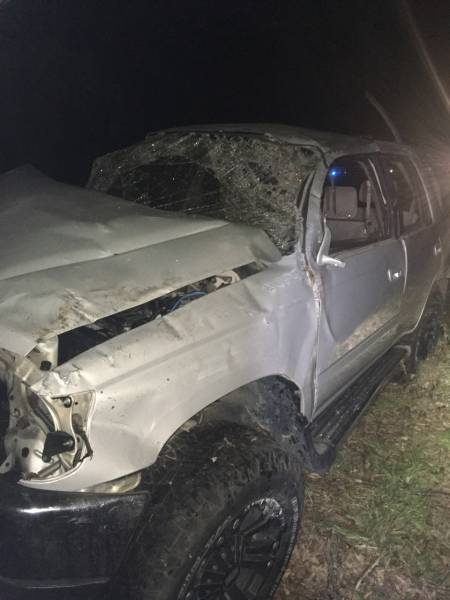 Single Motor Vehicle Accident Near Ashford - Newspaper Carrier Finds Victim