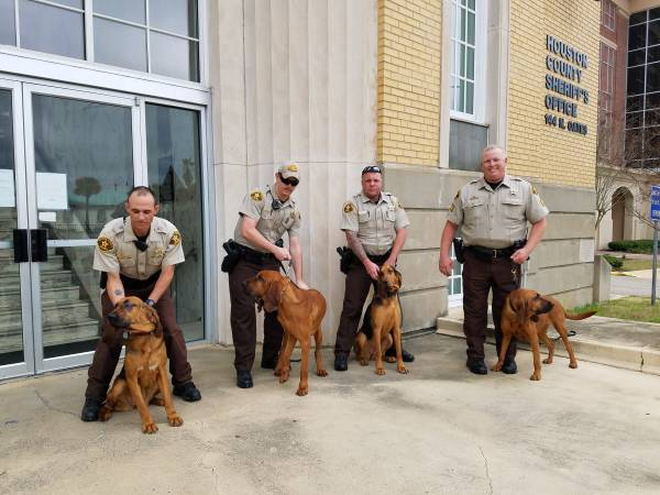 Houston County Sheriff's Office Bloodhounds