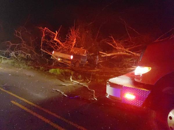 3:52 AM... Vehicle verse Tree on East Smithville Road