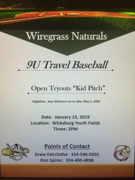Wiregrass Naturals 9U Travel Baseball