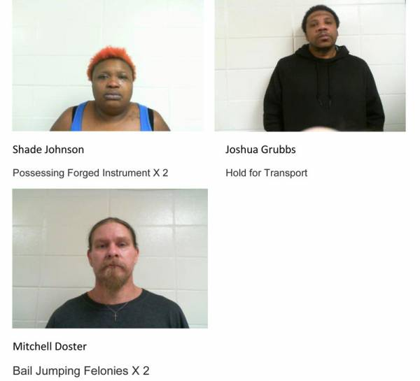 Dale County Sheriff's Office Mugshots for 2/5/2019