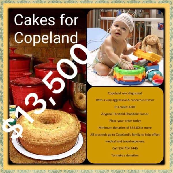 CAKES FOR COPELAND UPDATE.   Once Again Because Of So Many Of You Who Helped
