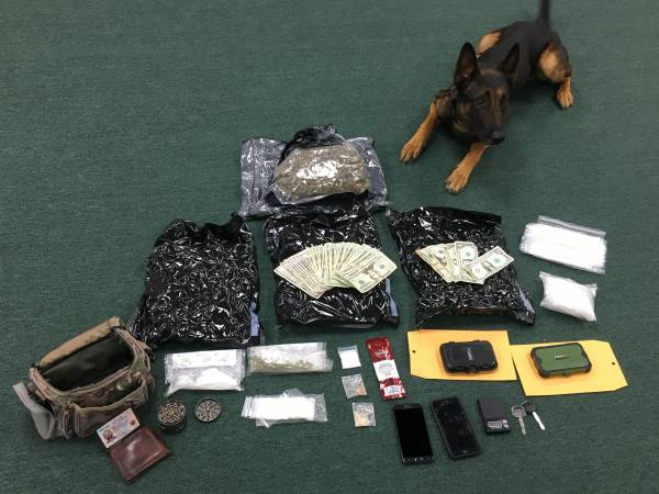 Okaloosa County Sheriff's Office K9 Unit Earns Case of the Quarter